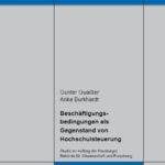 Beschäftigungsbedingungen als Gegenstand von Hochschulsteuerung. Studie im Auftrag der Hamburger Behörde für Wissenschaft und Forschung